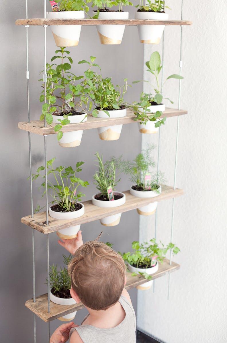 S pestovaním byliniek doma vám môžu pomôcť aj vaše deti - je to zábava!
