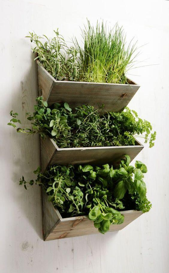 Ak budete pestovať bylinky vertikálne, ušetríte veľa miesta