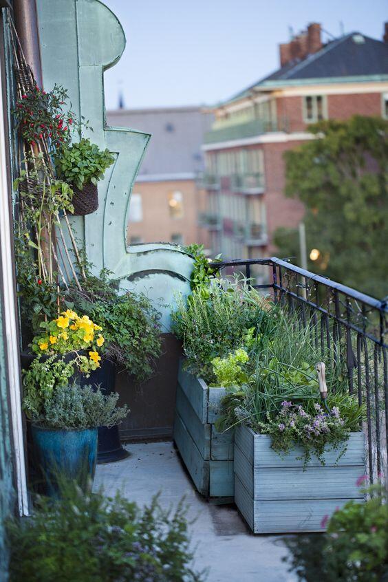 Aj na naozaj malom priestore môže vzniknúť ozajstná bylinková záhradka