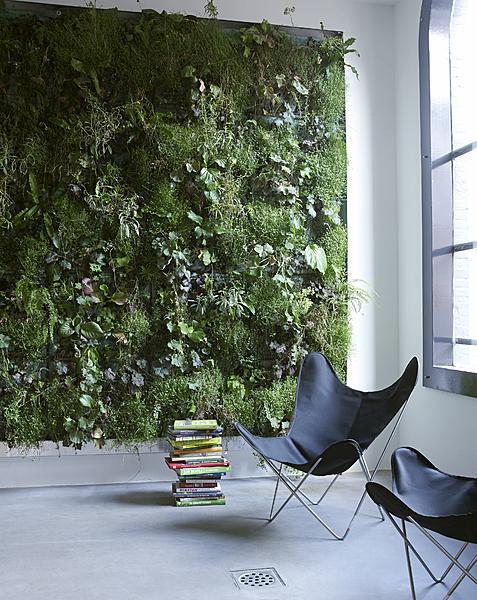 Vertikálna záhrada v podobe zelenej steny je originálnym spestrením interiéru