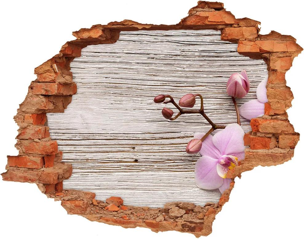 Samolepiaca diera na stenu Orchidea na strome WallHole-cegla-90x70-62495656