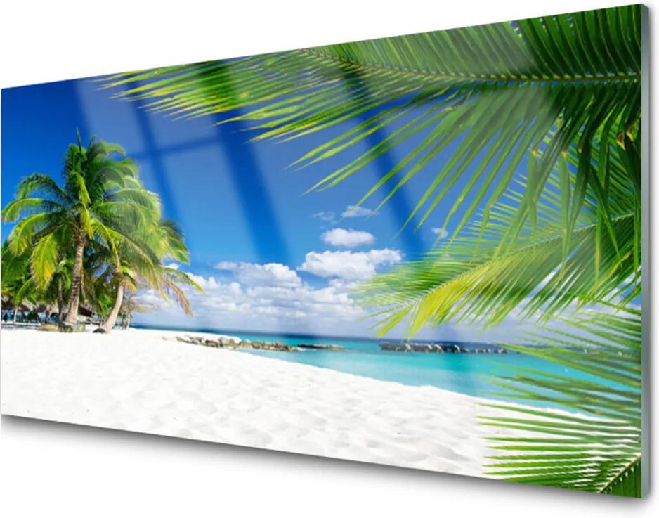 Sklenený obklad Do kuchyne Tropická Pláž More Výhľad