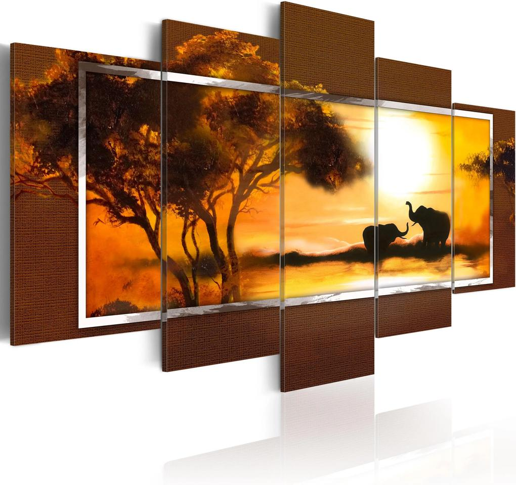 Obraz - Meeting at the savannah 100x50