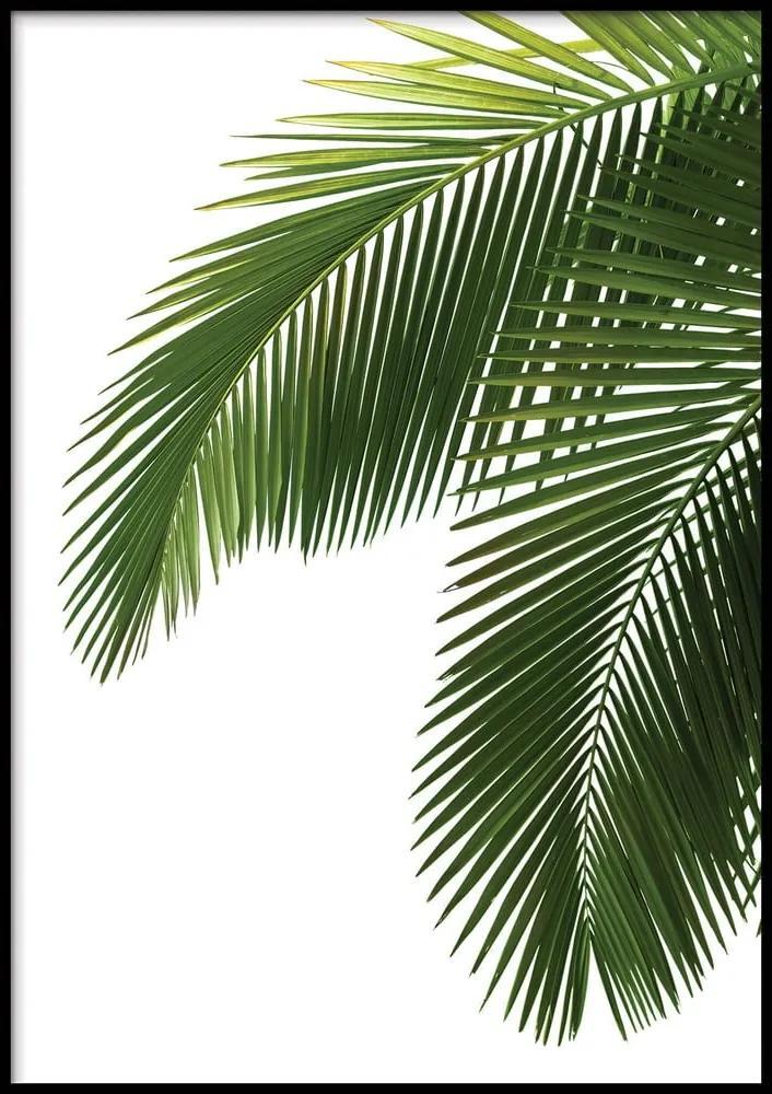Nástenný plagát v ráme BAHAMAS, 50 x 70 cm