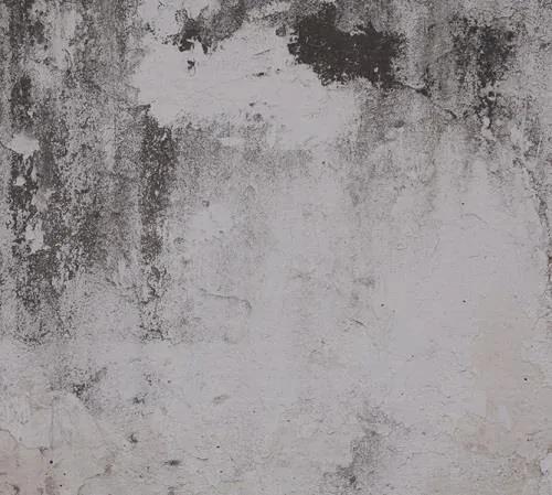 Luxusné vliesové fototapety, rozmer 300 cm x 270 cm, omietková stena, P+S International NT6332025