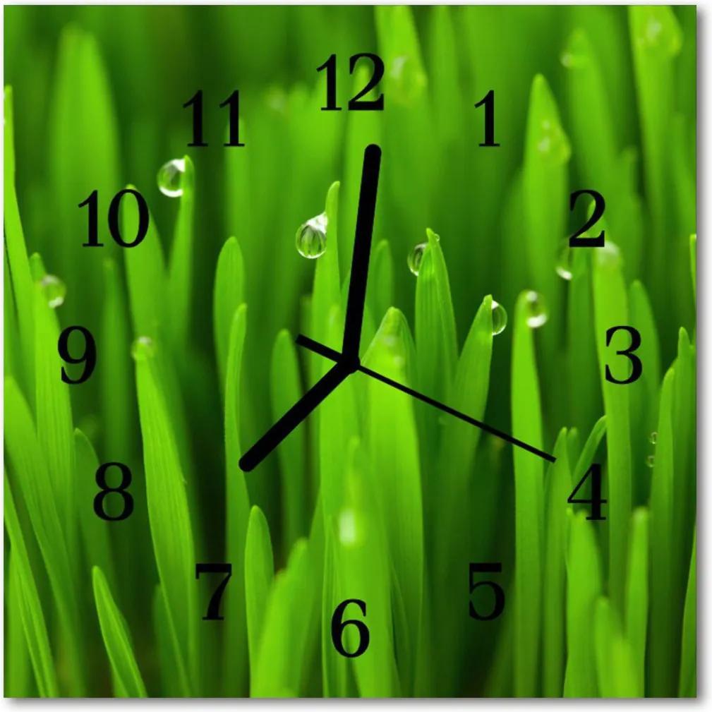 Nástenné skleněné hodiny Rosa na trávě