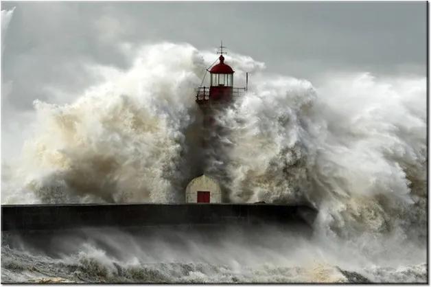 Tlačený obraz Veterné pobrežie a vlnobitie 1306A_1T