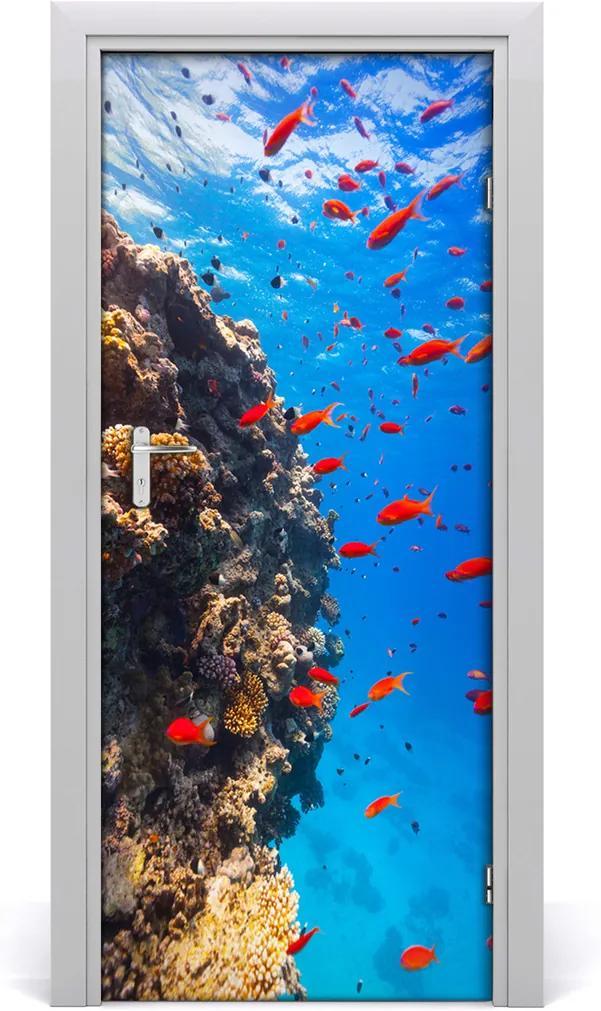 Samolepící fototapeta na dveře Korálový útes