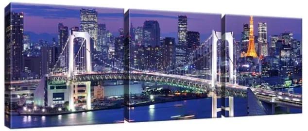 Obraz na plátne Tokijský záliv 90x30cm 1277A_3A