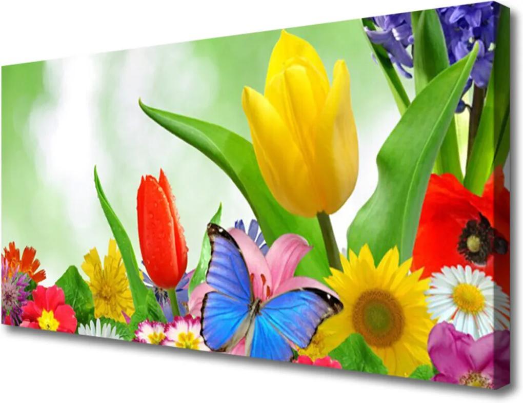 Obraz Canvas Motýl květiny příroda