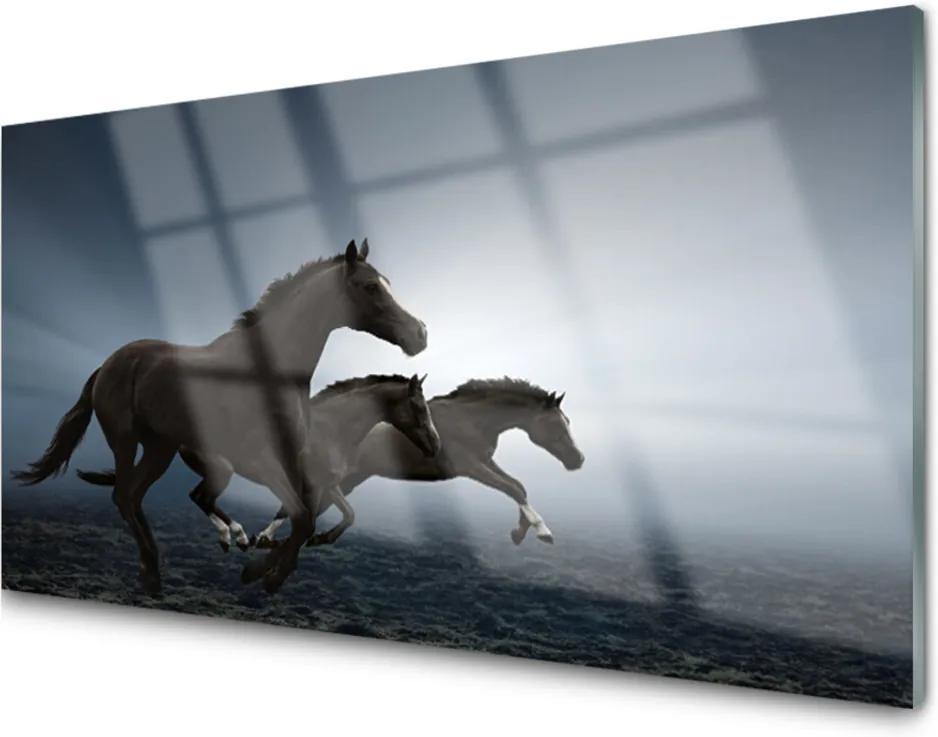 Akrylové obraz Skleněný koně zvířata