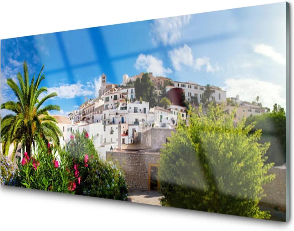 Plexisklo obraz Město palma krajina