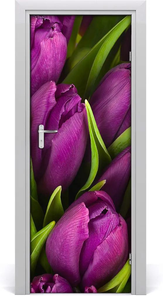 Fototapeta samolepící Fialové tulipány