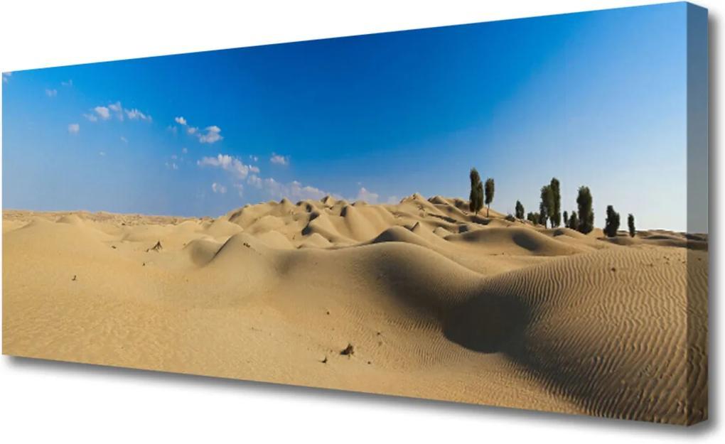 Obraz na plátně púšť Krajina