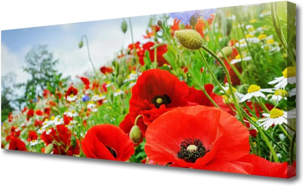 Obraz na plátně Skleněný květiny příroda