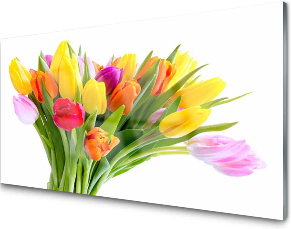 Obraz plexi Tulipány Kvety Rastlina