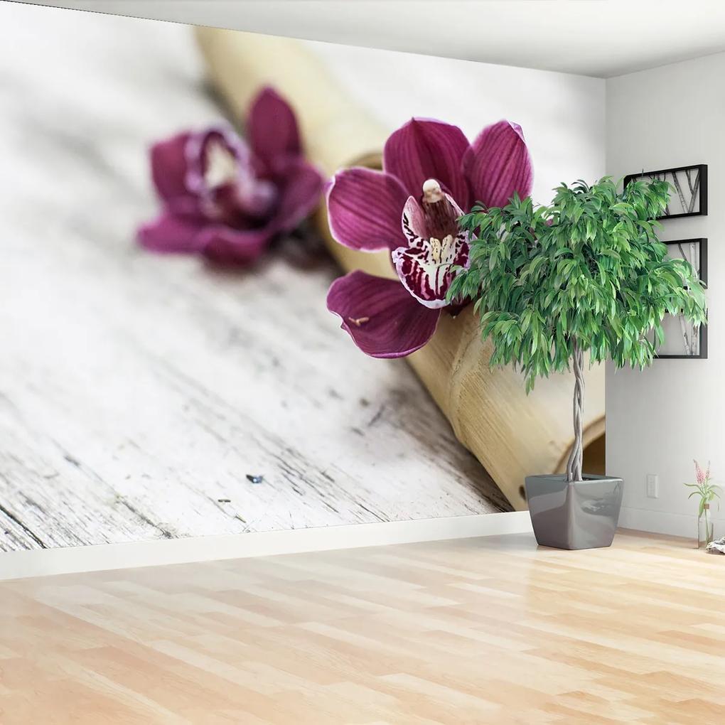 Fototapeta Orchidejové dřevo
