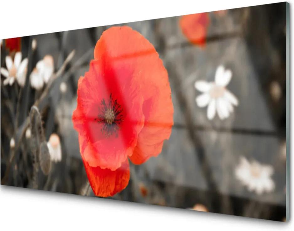 Obraz na skle Sklenený Kvety Rastlina