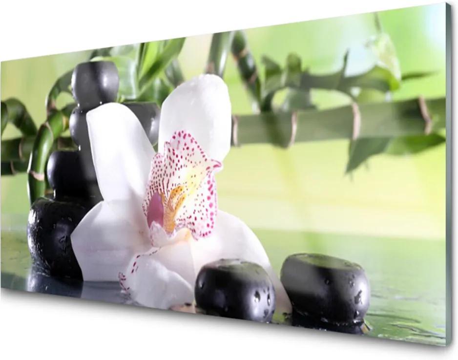 Skleněný obraz Orchidej kameny bambus