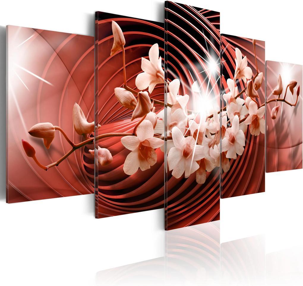 Obraz - Scarlet Carousel 100x50