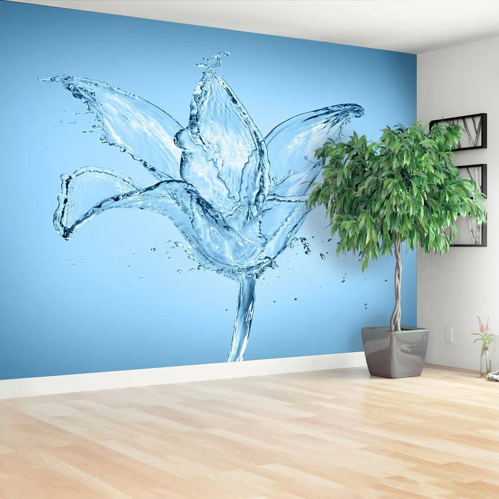 Fototapeta Vodní květ
