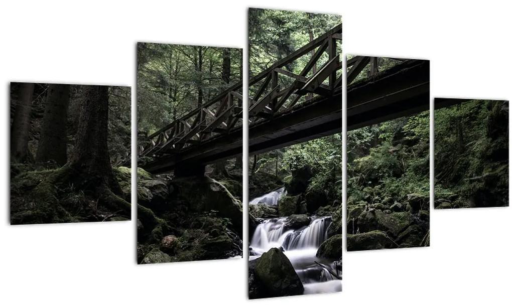 Obraz z čierneho lesa (125x70 cm), 40 ďalších rozmerov