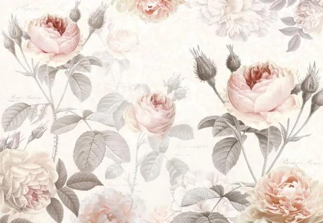 Vliesové fototapety, rozmer 368 cm x 248 cm, ruže, Komar XXL4-034