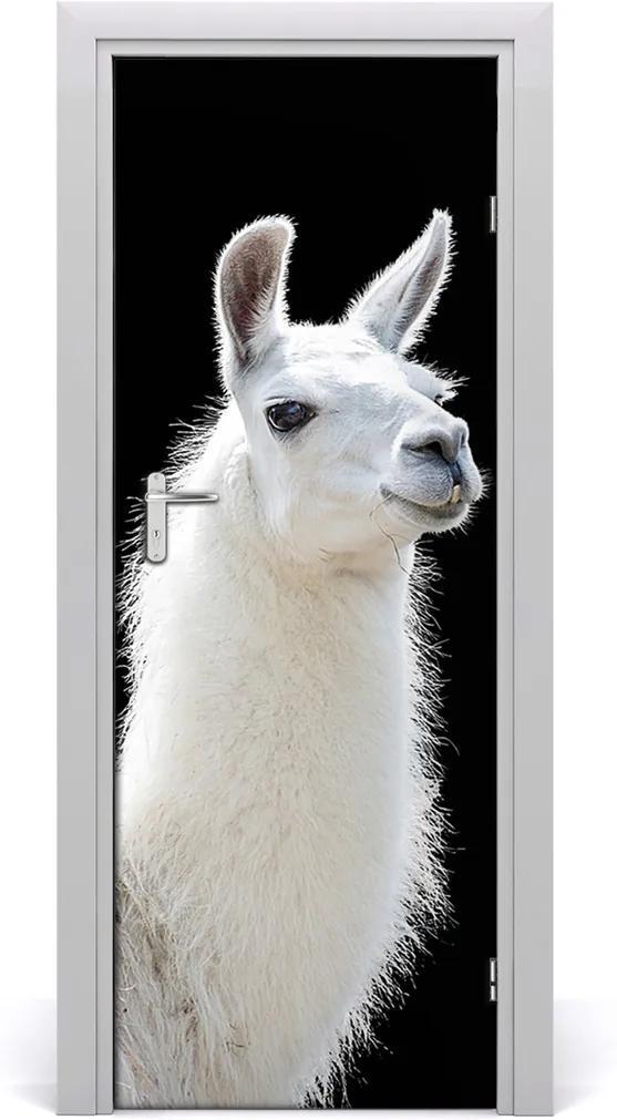 Fototapeta samolepící na dveře Bílá lama