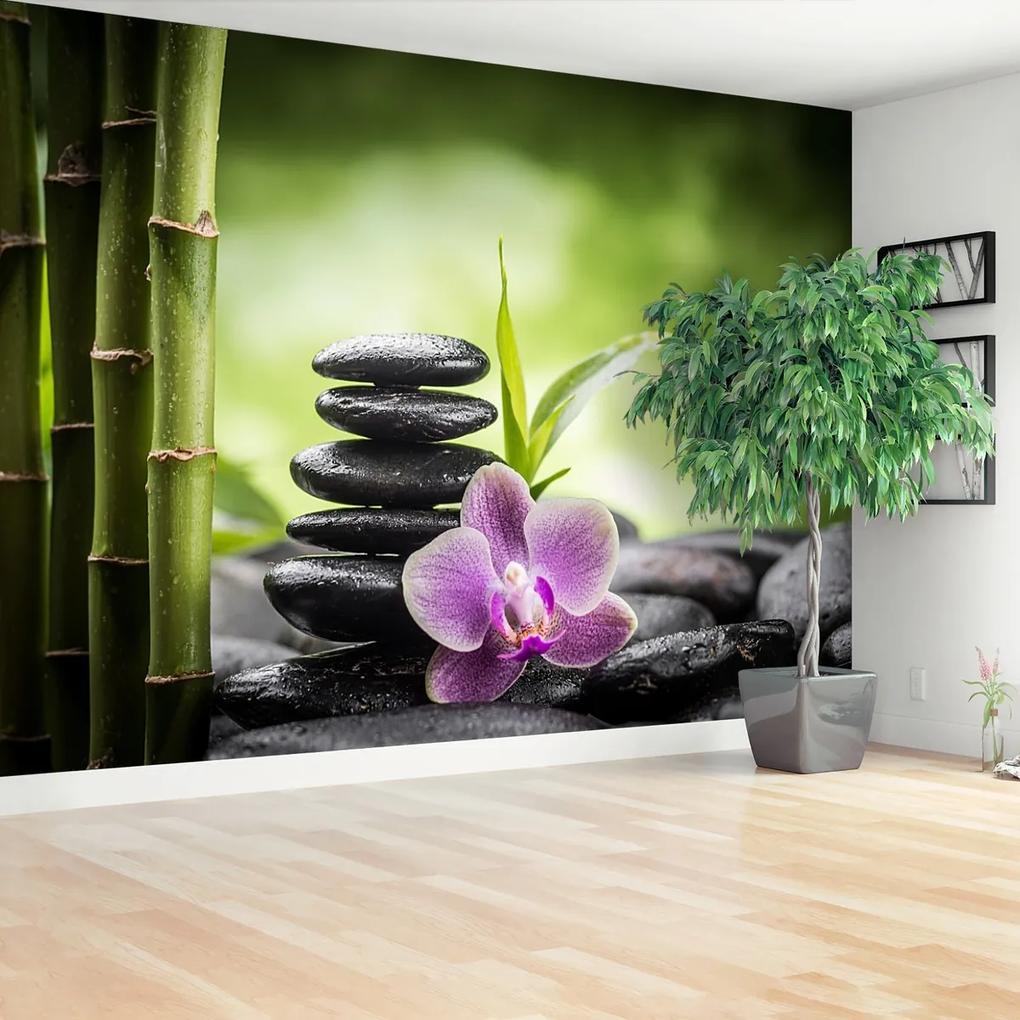 Fototapeta Orchidej zen