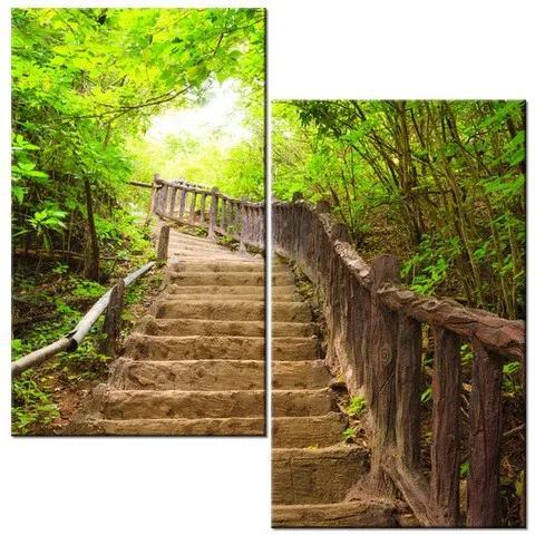 Tlačený obraz Staré schodisko v lese 60x60cm 1329A_2A