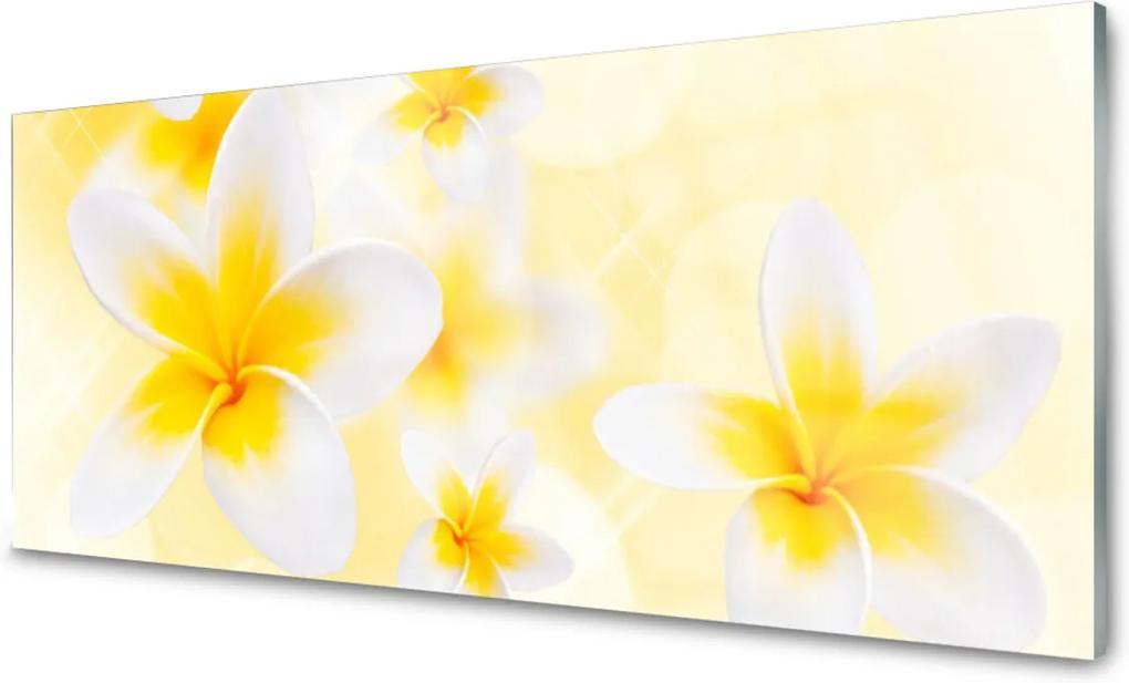 Skleněný obraz Kvety Rastlina Príroda