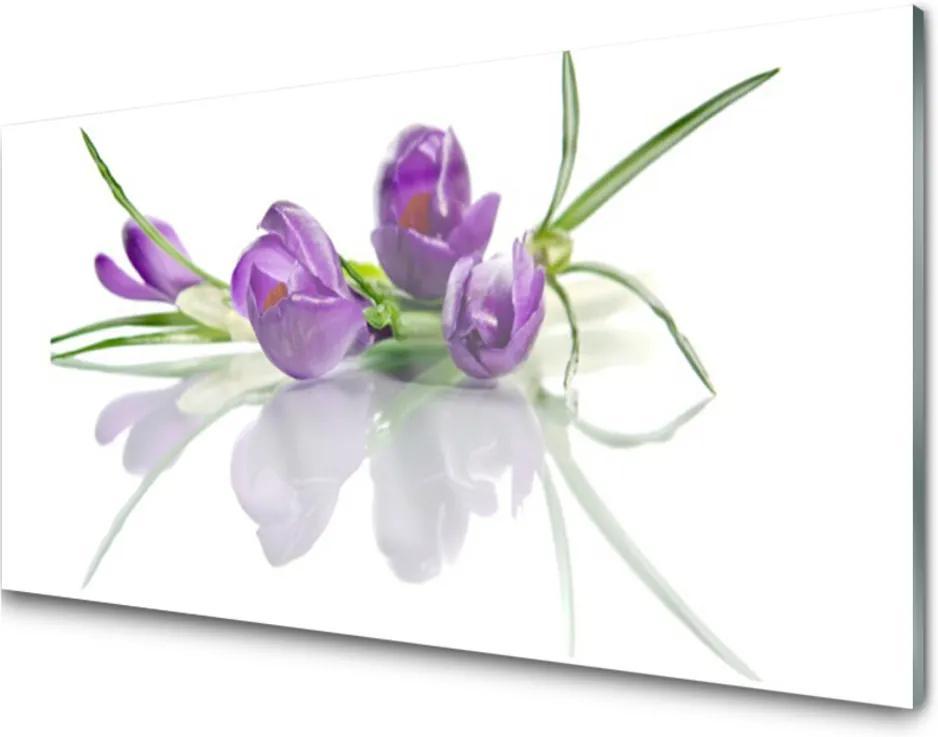 Obraz plexi Kvety Rastlina Príroda