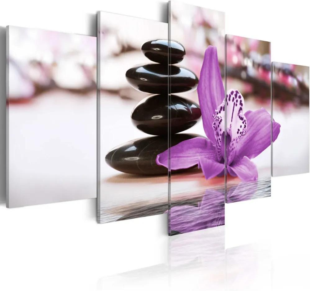 Obraz na plátne - Orchidea, kameny a zen 100x50 cm