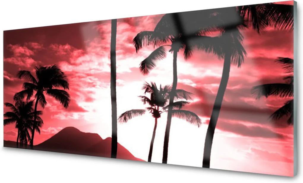 Obraz na akrylátovom skle Hora Palmy Stromy Príroda