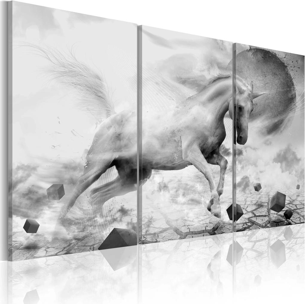 Obraz - A unicorn on the edge of the world 60x40