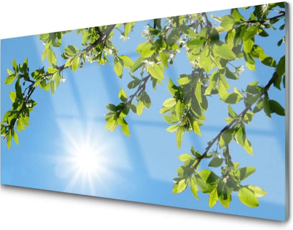 Obraz na akrylátovom skle Sklenený Slnko Príroda