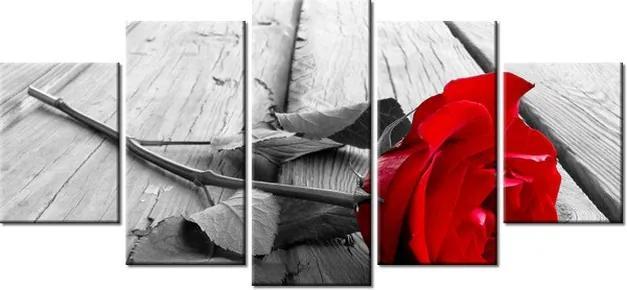 Tlačený obraz Červená ruža 150x70cm 1138A_5B