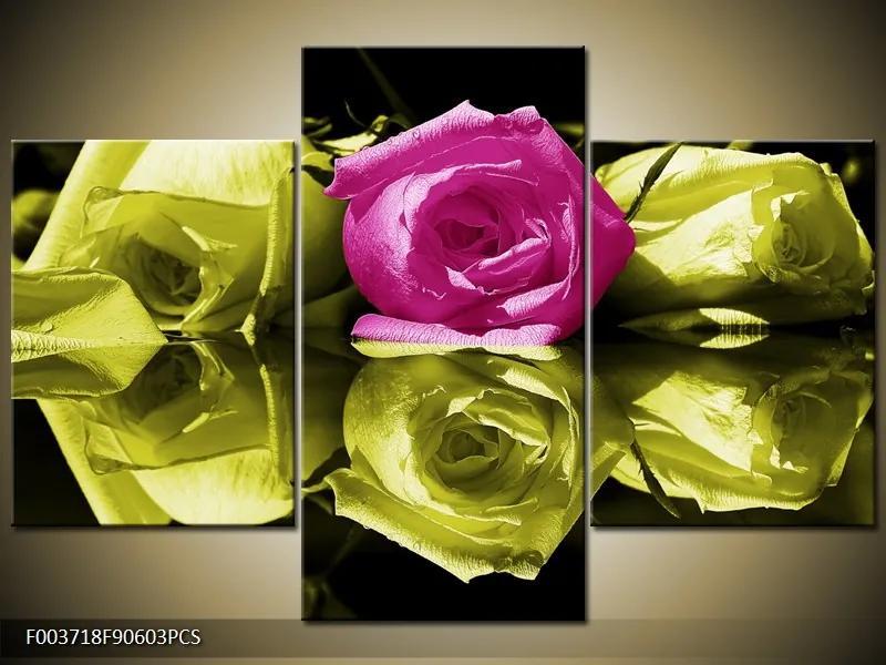 Krásne obrazy