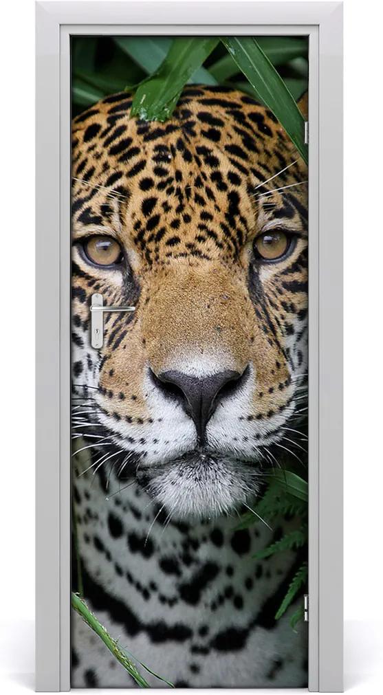 Fototapeta samolepící na dveře Amazonie jaguár