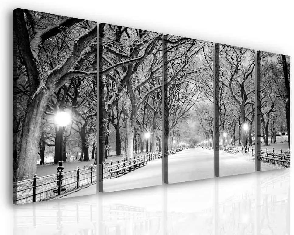 InSmile Večerní procházka parkem 150x70 cm