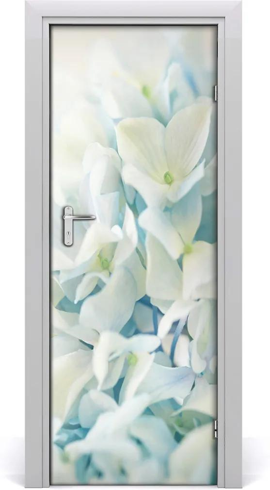 Fototapeta samolepící Květ hortensie
