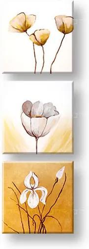 Ručne maľovaný obraz 3 dielny KVETY DA013E3