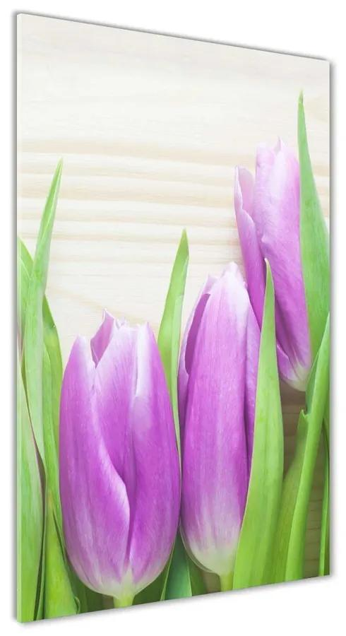 Foto obraz akrylový Fialové tulipány pl-oa-70x140-f-78755149