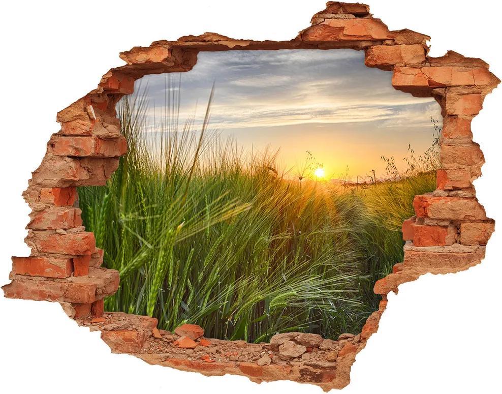 Nálepka fototapety 3D výhľad Pole pšenice WallHole-cegla-90x70-86489340