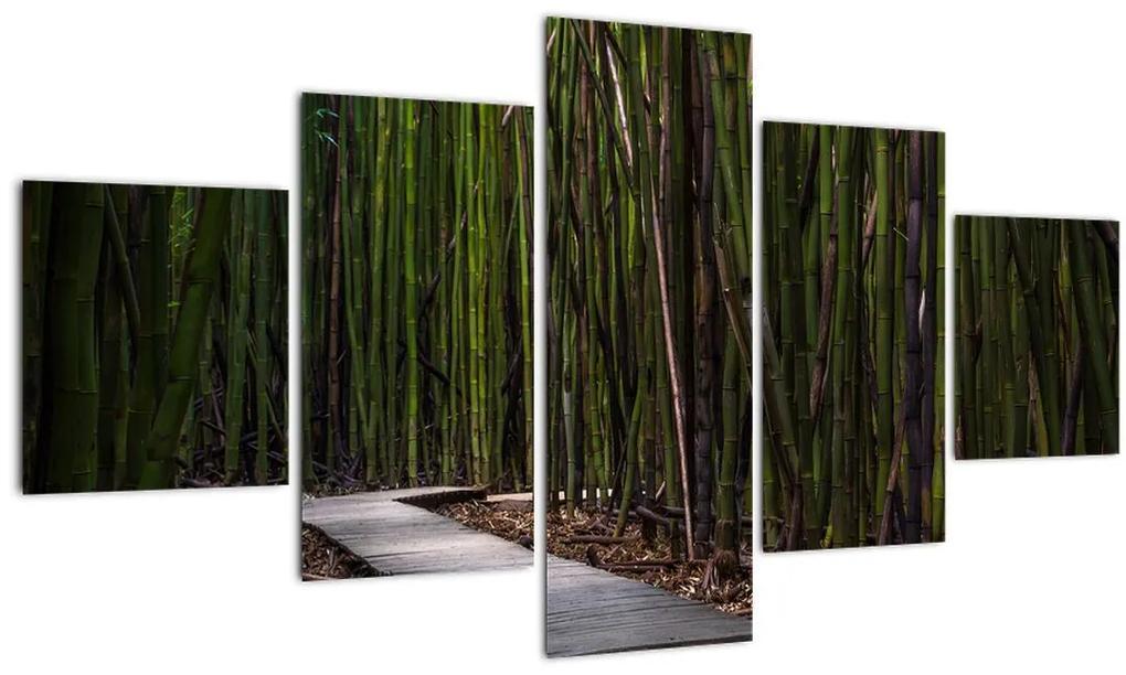 Obraz - Medzi bambusy (125x70 cm), 40 ďalších rozmerov