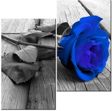 Tlačený obraz Modrá ruža na podlahe 60x60cm 2214A_2J