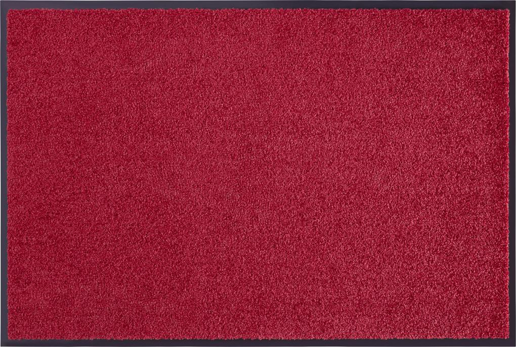 Hanse Home Collection koberce Rohožka Wash & Clean 101466 Bordeaux - 40x60 cm