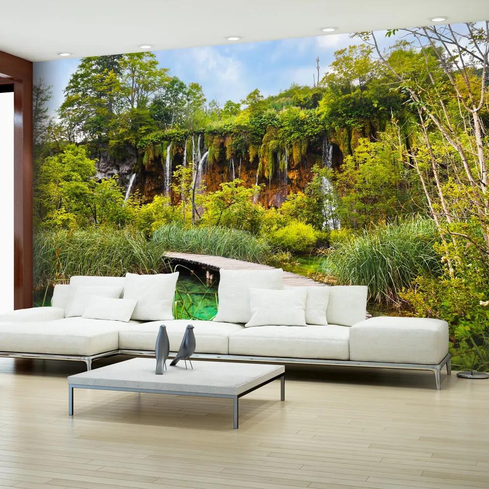Fototapeta - Green oasis 200x140