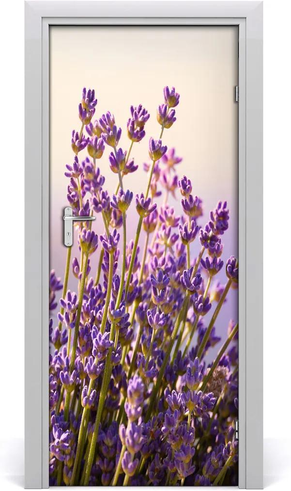 Fototapeta na dveře Levandule