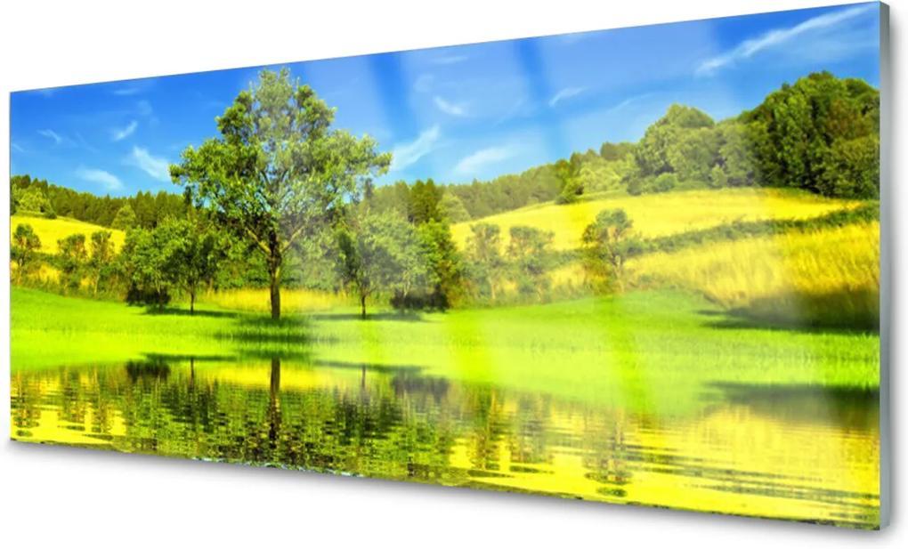 Skleněný obraz Louka strom příroda